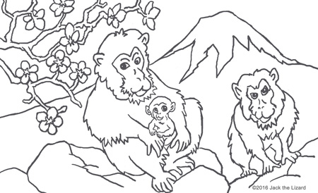 Animals In Legend Coloring Pages