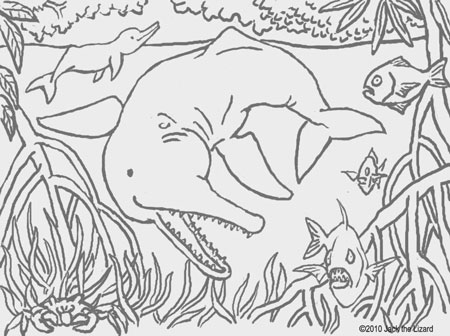 Coloring Pages of Amazon River Dolphin