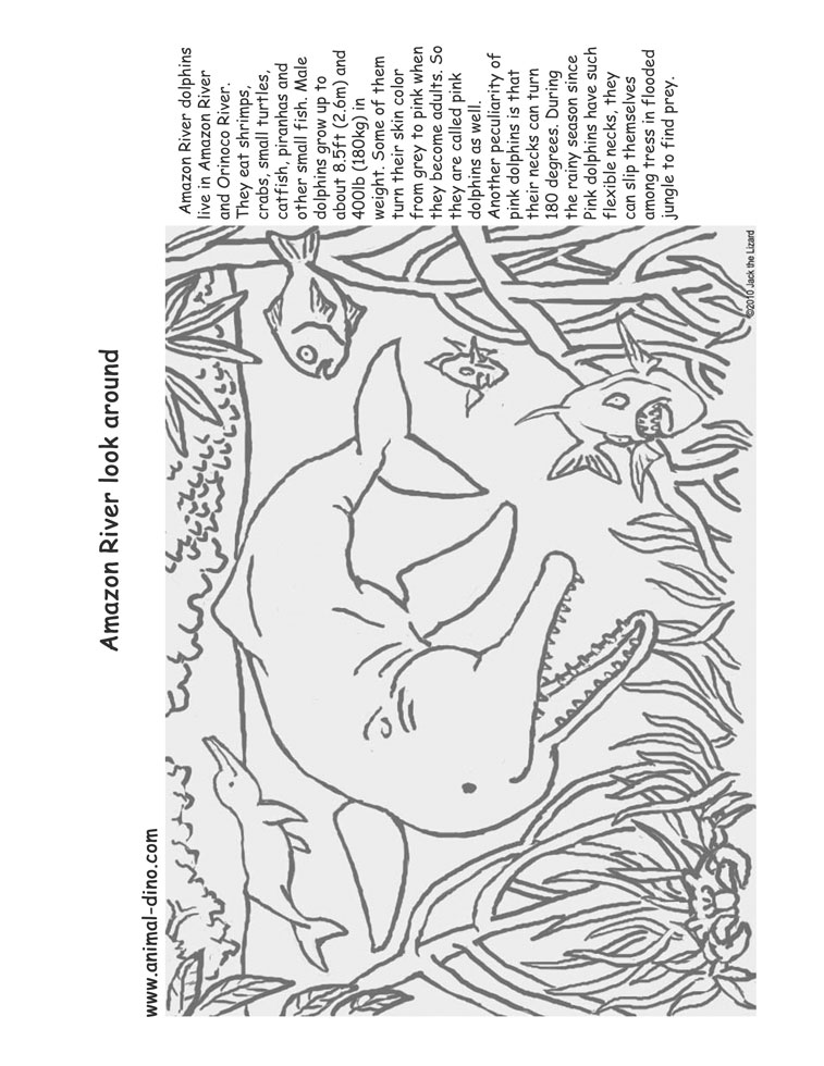 River free colouring pages Coloring book amazon