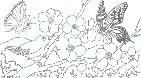 animal coloring pages jack the lizard wonder world. Black Bedroom Furniture Sets. Home Design Ideas