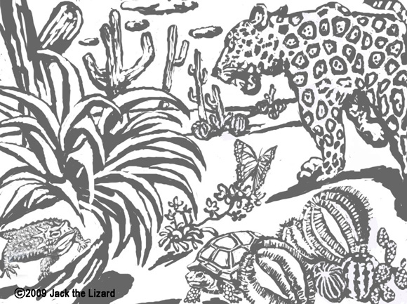 Coloring Pages of Jaguar, Tortous, Lizard