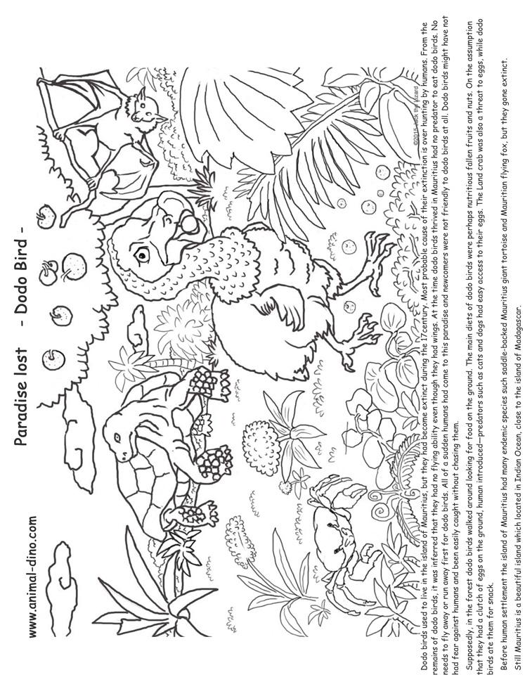 Animal Coloring Page Dodo Birds Print Size