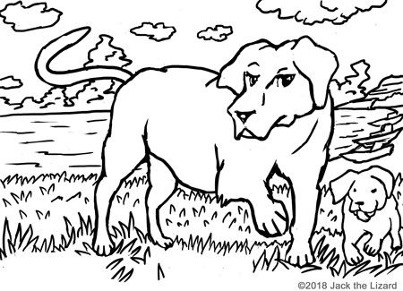 Charmant ... Coloring Pages Of Labrador Retrievers
