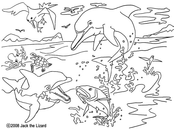 Colouring Page of Dolphin