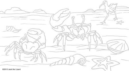 Coloring Pages of Fiddler Crab