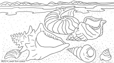 Coloring Pages of Soft Body make Hard Shell