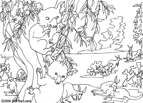 Colouring Page of Koala