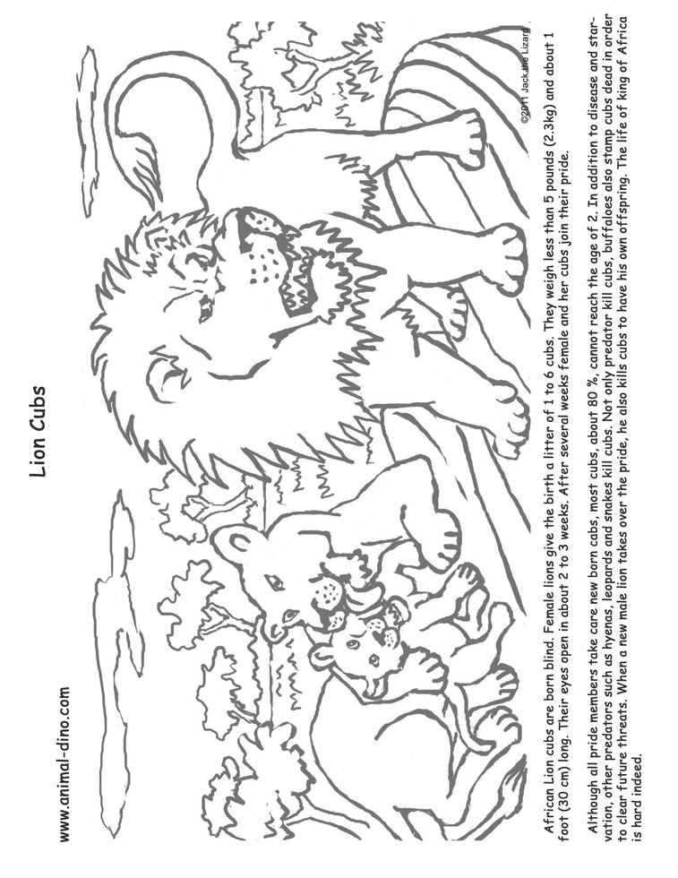 Animal Coloring Page Lion cubs Print Size Jack the Lizared