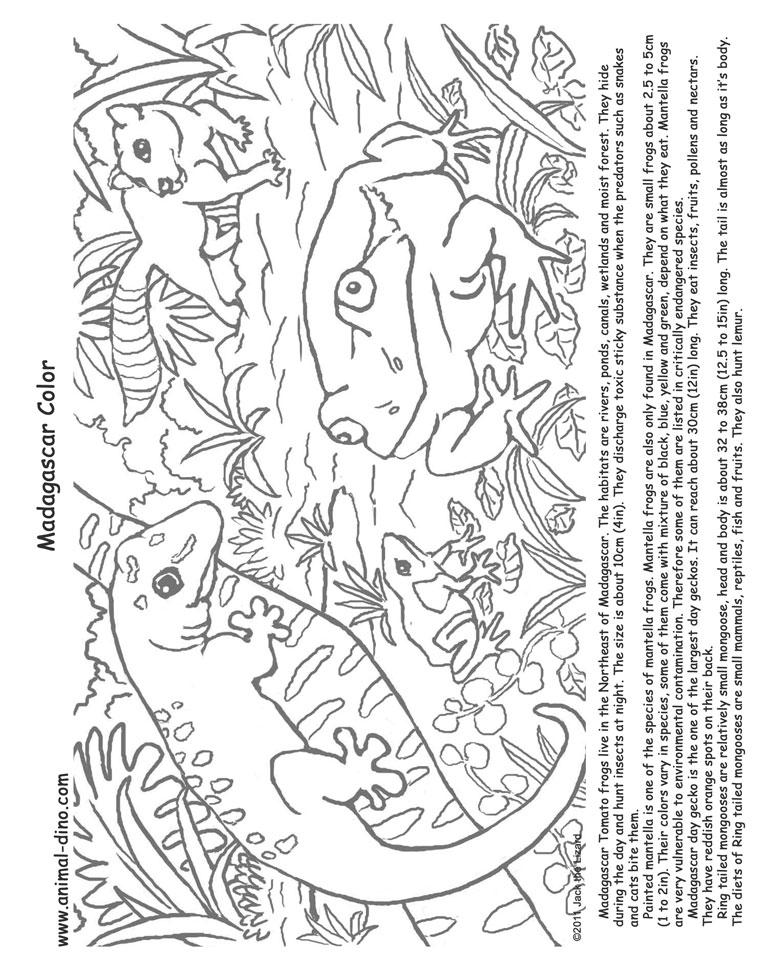 Madagascar Free Coloring Pages
