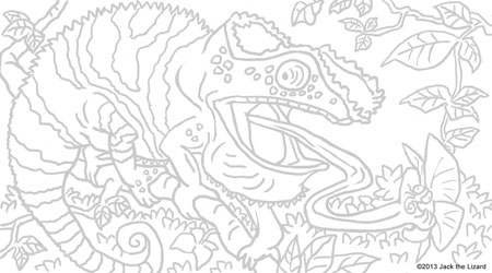 Coloring Pages of Panther Chameleon
