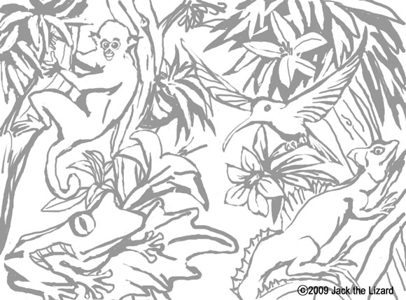 Coloring Pages of Animals in the Toropical Reinforest