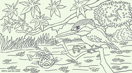 Coloring Pages of River Kingfisher