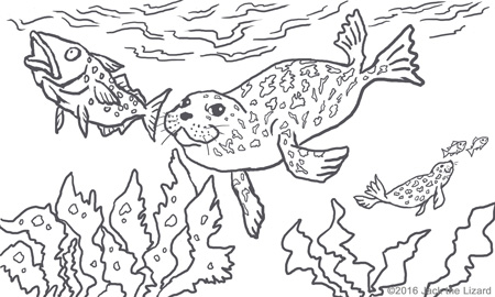 Coloring Pages of Spotted Seal