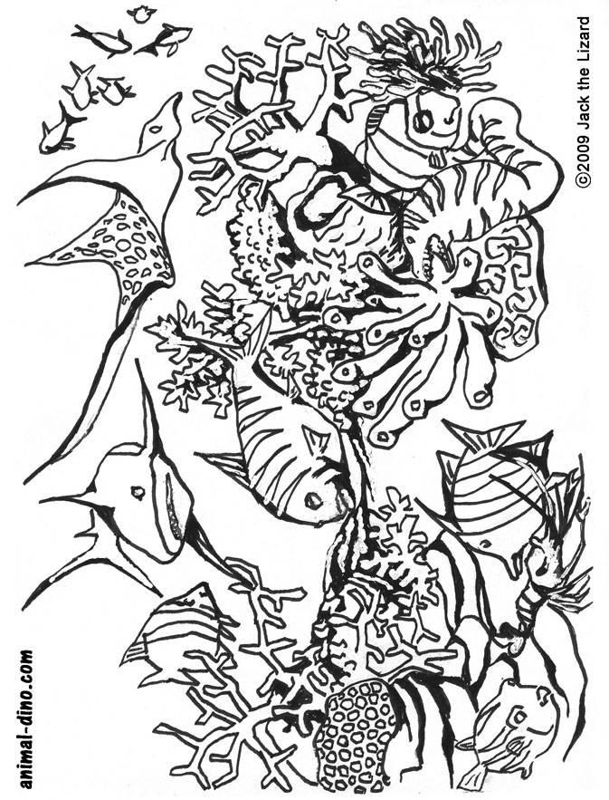 animal coloring page under the sea print size jack the lizared wonder world