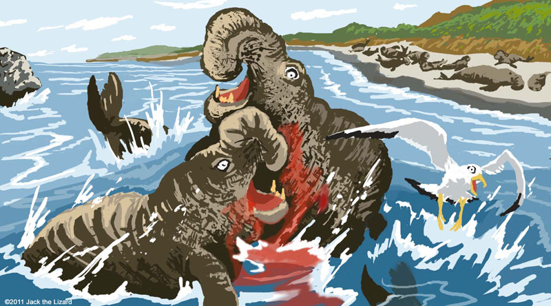 Walrus vs Elephant Seal http://www.animal-dino.com/wild_kingdom.html